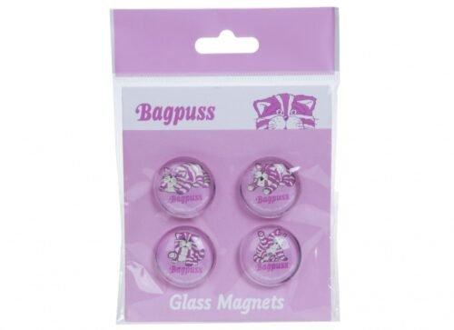 Foto van Bagpuss magneten glas 2